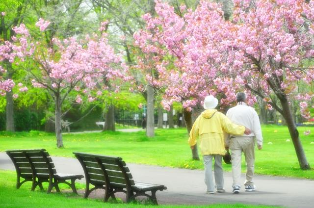 公園で仲良く歩く老夫婦の散歩の姿