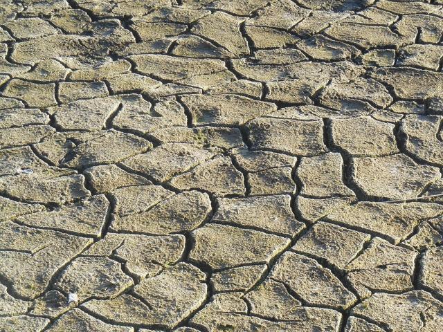 カラカラの地割れした地面